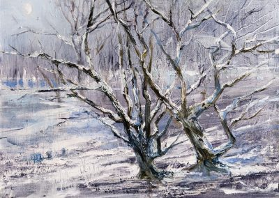 31.Lakeside Trees.Oil on board 30x24cm.£595