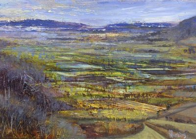 Field patterns-Lyth valley.Oil on panel.32x21cm.£595