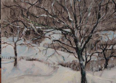 Damson Tree.Oil image 26x24cm frame 40x37cm £395