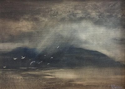 Storm and Gulls-Holy Isle ,Isle of Arran.Oil.18x24cm Frame 30x36cm.£395.sold