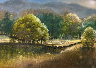 .Summer Field -towards Wetherlam.Oil.image 30x20cm.frame 41x32cm.£495