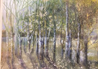 Lakeside Evening V3.Watercolour.63x50cm.£1200