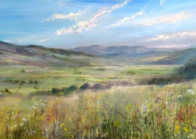 Summer Meadow.Oil on board,36x90cm.£sold